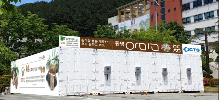 컨테이너 5개를 활용해 만든 스마트팜 생산 시설.