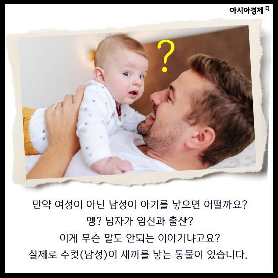 [카드뉴스]남자가 임신을 한다고요? 지구상에 유일한 종족-해마 이야기