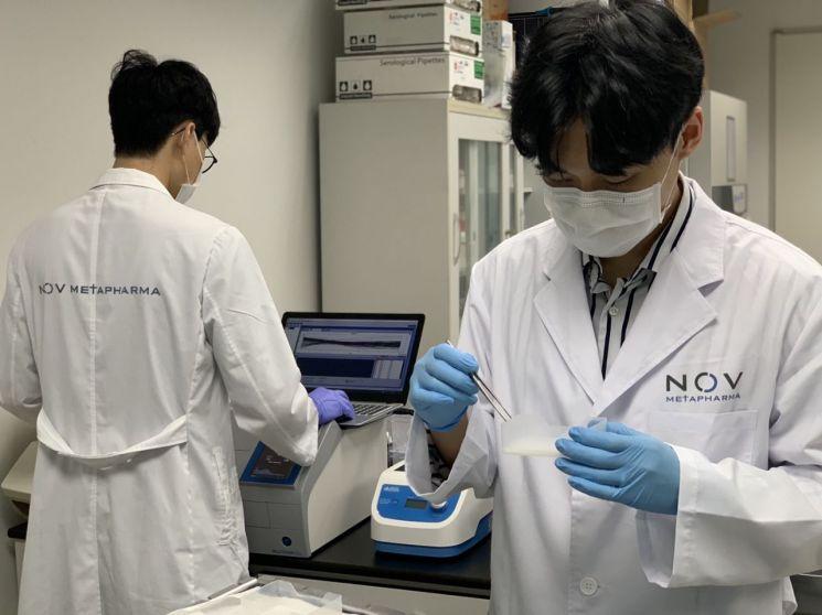 대사질환치료제 개발업체 노브메타파마 연구원들이 연구소에서 실험을 진행하고 있다.<회사 제공>