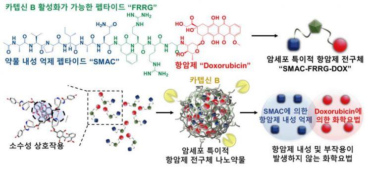 암세포 특이적 항암제 전구체 나노약물 기술의 모식도
