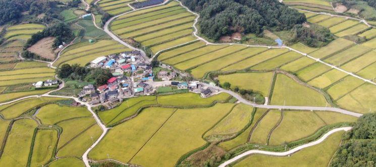 거창 신원 중유 신촌마을 전경 (사진=거창군)