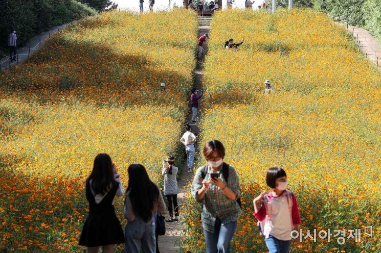 [포토]가을 정취 만끽하는 시민들