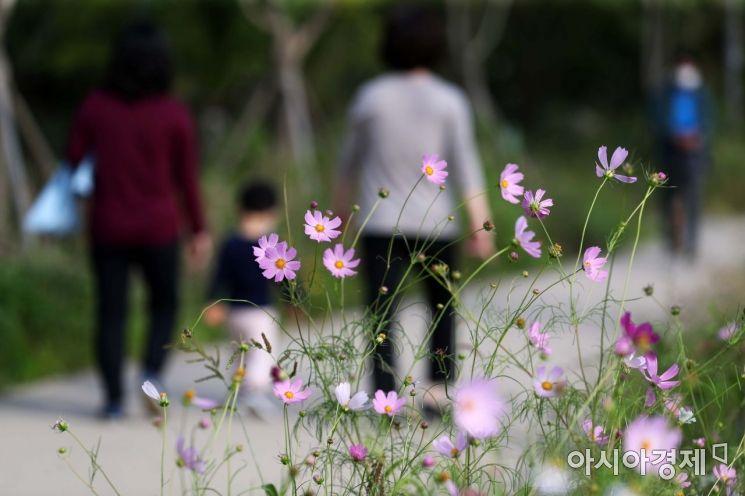 완연한 가을 날씨가 이어진 24일 서울 용산구 이촌한강공원에서 시민들이 산책을 하고 있다. /문호남 기자 munonam@