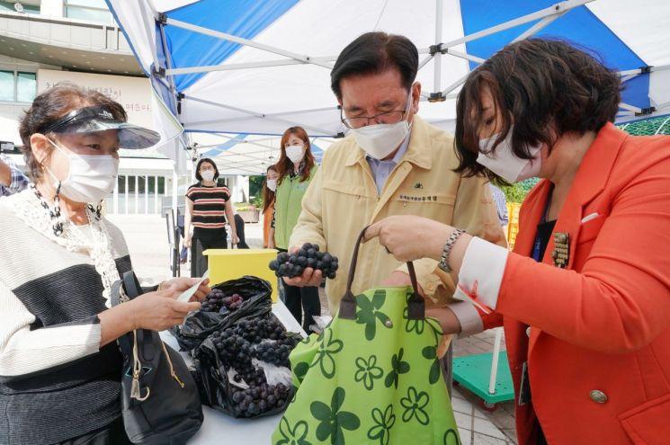 24일 동대문구청 광장에서 화재로 피해 입은 청량리청과물시장 상가의 과일이 판매됐다. 유덕열 동대문구청장이 포도를 살펴보고 있다.