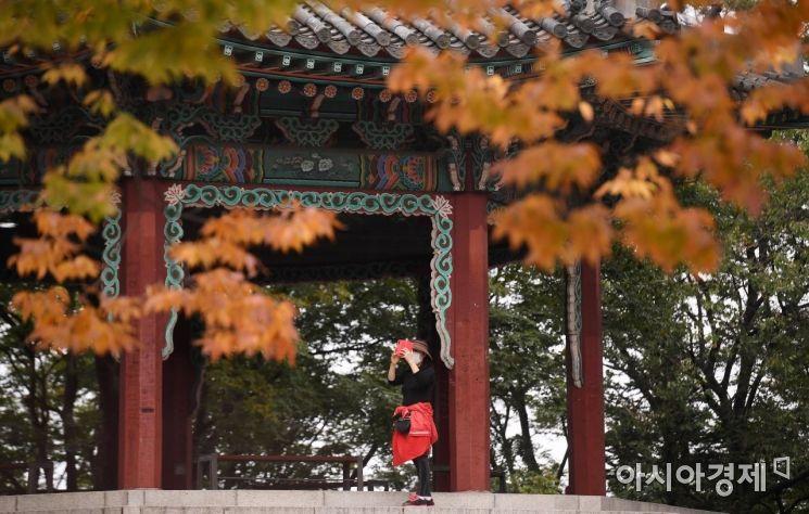 서울 중구 남산을 찾은 한 시민이 물들어가는 나무 아래에서 가을 정취를 만끽하고 있다./김현민 기자 kimhyun81@