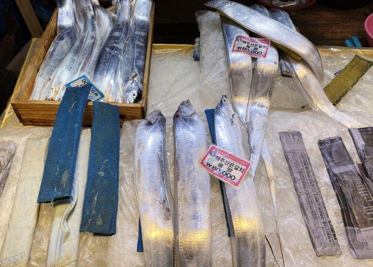 제주동문재래시장에서 판매되고 있는 대갈치. 19일 제주도 수산물 가게에서는 통통한 생물 갈치 3~4마리가 7~8만 원에 판매되고 있다. [이미지출처=연합뉴스]