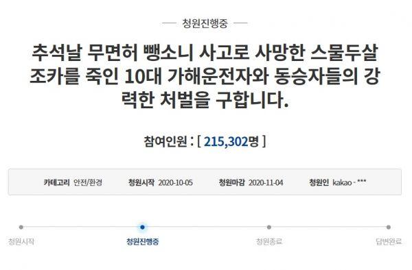지난 5일 청와대 국민청원 게시판에는 '추석날 무면허 뺑소니 사고로 사망한 스물두 살 조카를 죽인 10대 가해 운전자와 동승자들의 강력한 처벌을 구합니다'라는 제목의 글이 게시됐다. 사진=청와대 홈페이지 화면 캡처