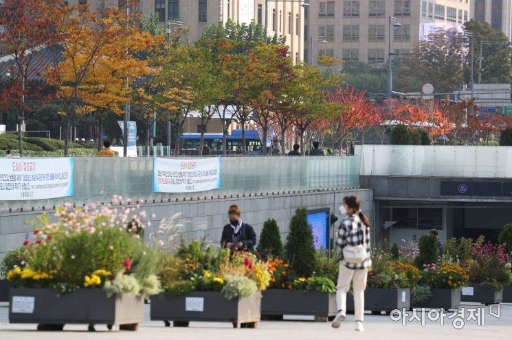 일교차가 큰 가을 날씨가 이어진 20일 서울 종로구 광화문광장에 단풍이 물들고 있다.