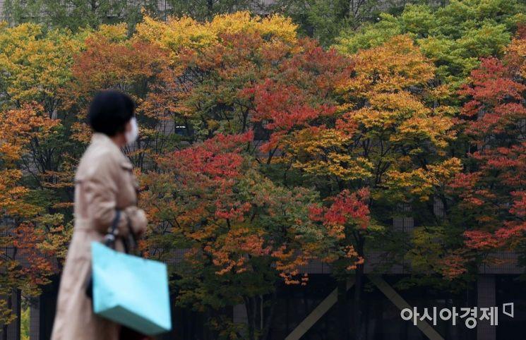 [포토]가을 정취 물씬