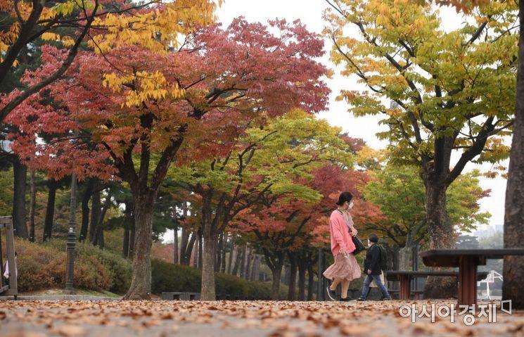[포토] '가을속으로'