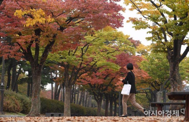 [포토] 가을로 물든 공원
