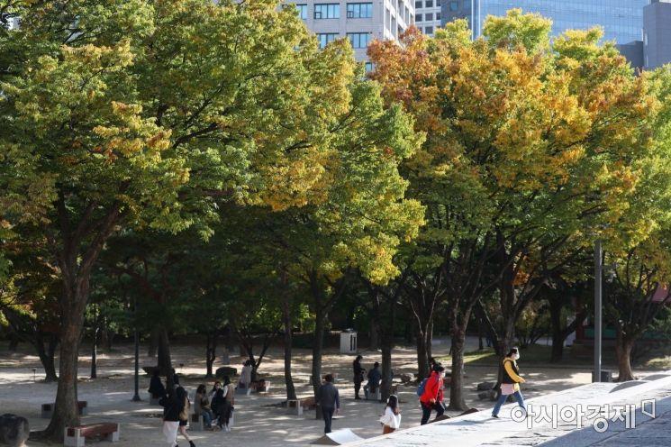 [포토]깊어가는 가을