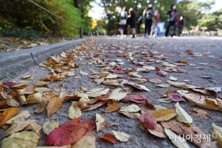 선선한 가을 날씨를 보인 28일 서울 중구 덕수궁에서 시민들이 가을 정취를 만끽하고 있다.