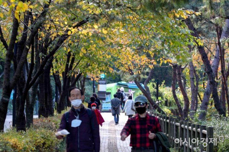완연한 가을 날씨가 이어지고 있는 29일 서울 남산 산책로에 단풍이 물들고 있다./강진형 기자aymsdream@