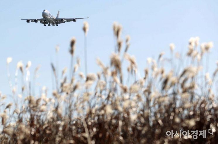 맑은 날씨를 보인 8일 인천공항 하늘정원 억새밭 위로 비행기가 지나고 있다. /문호남 기자 munonam@