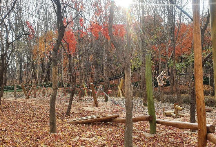 인헌동 유아 숲 체험원