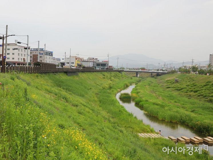 경북 칠곡군 동정천 모습.