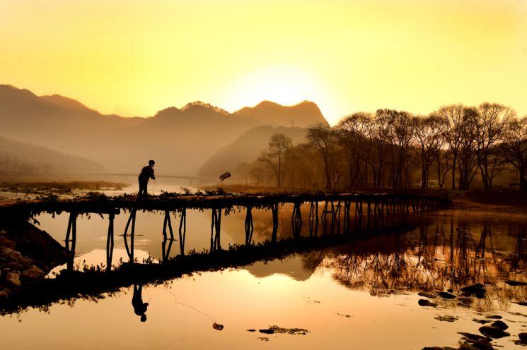 영월은 사라진 옛다리인 섶다리가 많은 고장이다. 특히 주천면에는 쌍섶다리와 판운리 섶다리가 유명하다. 아침노을을 맞으며 한 아이가 섶다리 아래 평창강으로 어망을 던지고 있는 풍경이 정겹다.
