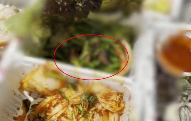 프랜차이즈 족발과 함께 배달된 반찬에서 살아있는 쥐가 발견됐다. 사진=MBC '뉴스데스크' 방송 화면 캡처.