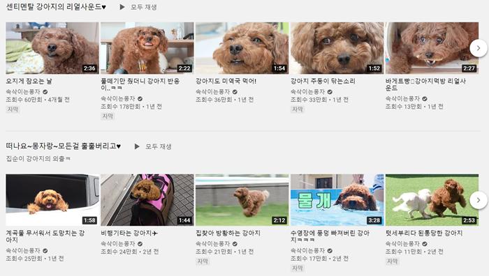 속삭이는 몽자 유튜브 채널