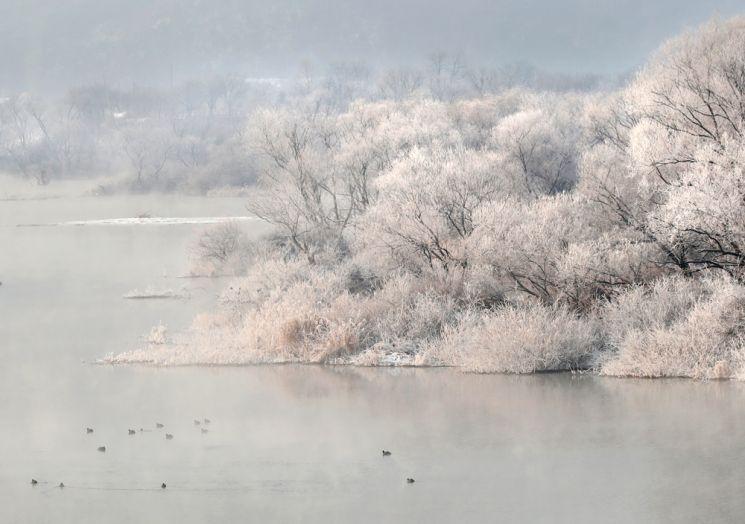 소양강에 물안개와 서리꽃이 피어 장관이다.