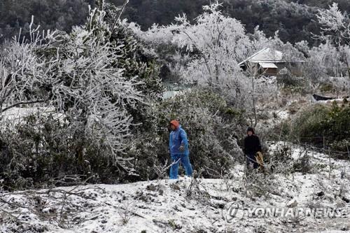 지난 1일 베트남 라오까이성에서 주민들이 눈 내린 길을 걷고 있다. [이미지출처=연합뉴스]