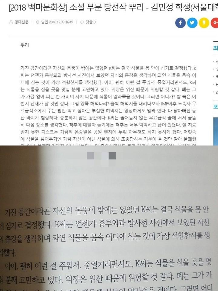 2018년 '백마문학상'을 받은 김 작가의 소설(위)과 2020년 문예지 '소설미학'에 올라온 남성의 글(아래). 내용이 모두 같고 작가 이름만 다르다. [이미지출처 = 온라인 커뮤니티 캡처]