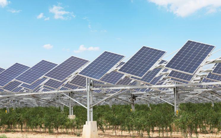 佛토탈 25억달러 투자…印 재생에너지 기업 지분 20% 인수
