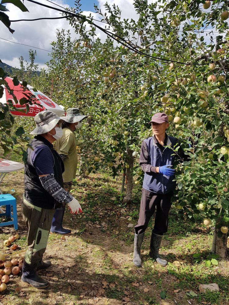 경남 밀양시 귀농인 멘토링 지원사업을 통해 귀농인들이 현장실습을 하고 있다.(사진=밀양시)