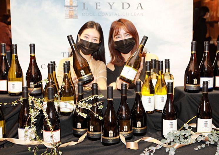 롯데백화점, 칠레 담은 프리미엄 와인 '레이다(LEYDA)' 선보여