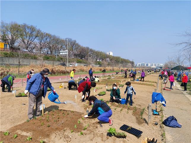 지난해 도시농업 체험학습장에 참가한 가족이 채소에 물을 주고 있다.