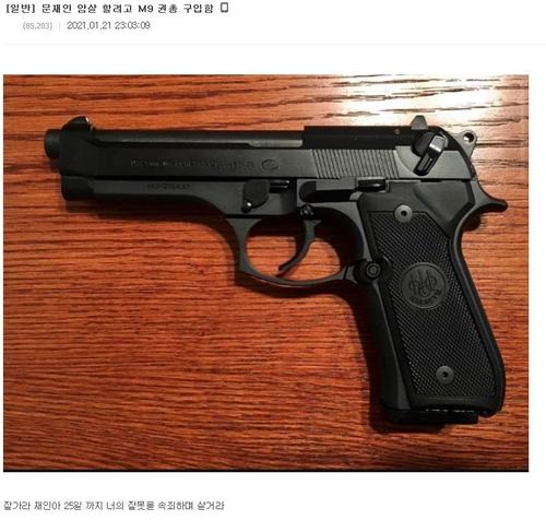 인터넷에 올라온 '대통령 암살하려 권총 샀다'라는 글. 사진출처 = 디시인사이드 캡처