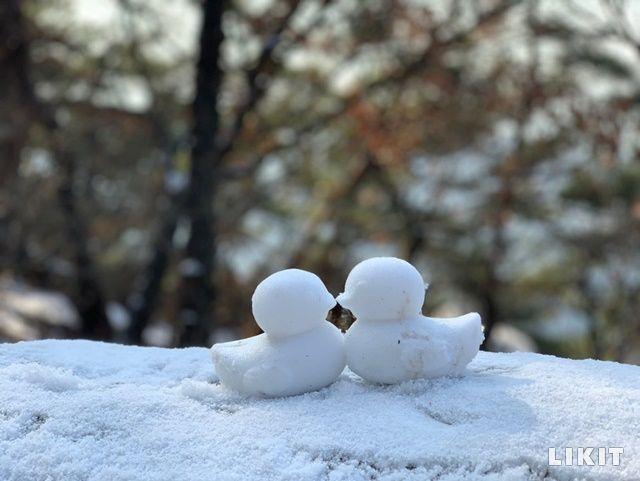 어린이 등산객이 만든 아차산 눈오리 커플