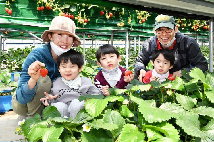 도시농부 늘었다…전체 농림어가 인구는 5년새 9.3% 감소