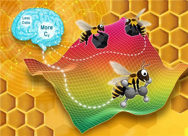 원하는 생성물(C2 화합물)의 수율은 높이고 부산물(숯, coke)의 생성을 최소화하는 조건을 찾기 위해 사용된 인공 꿀벌 군집(Artificial Bee Colony) 알고리즘 그림. (Reaction Chemistry & Engineering 저널 뒷표지 그림)