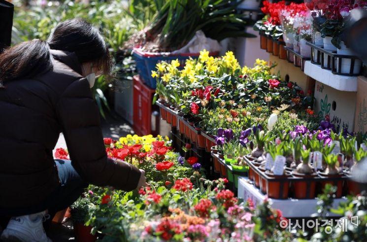 [포토] '꽃시장의 봄'
