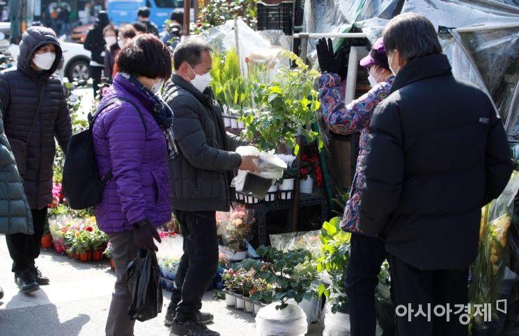 [포토] 화분 구매하는 시민들