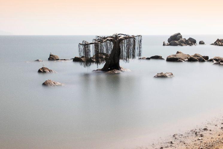 인천 옹진군 '배미꾸미조각공원' [이미지출처=게티이미지]