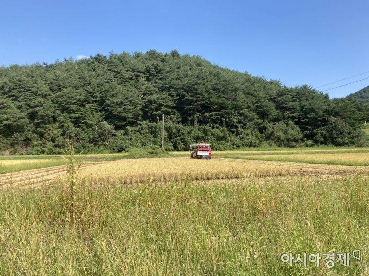 내년 하계 파종용 벼·콩·팥 생산·공급계획 확정