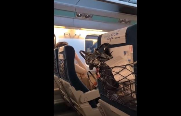여성은 승무원의 제지를 무시하는가 하면 큰 소리로 전화 통화를 하기도 했다. / 사진=유튜브 캡처