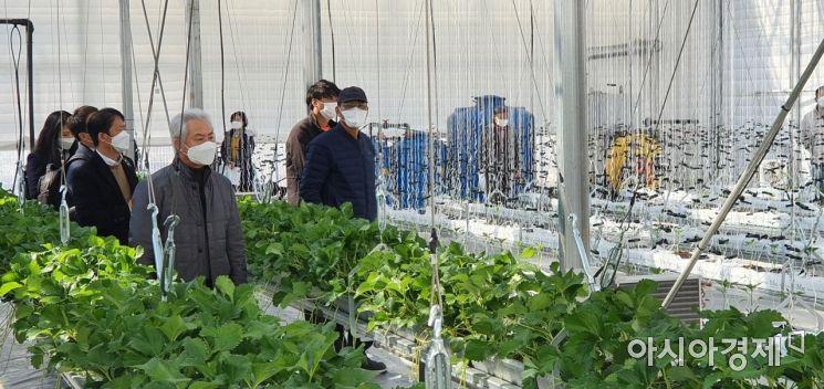2일 오후 전남 영암군 삼호읍에서 열린 스마트팜 샘플하우스 참석자들이 농작물을 둘러보고 있다.