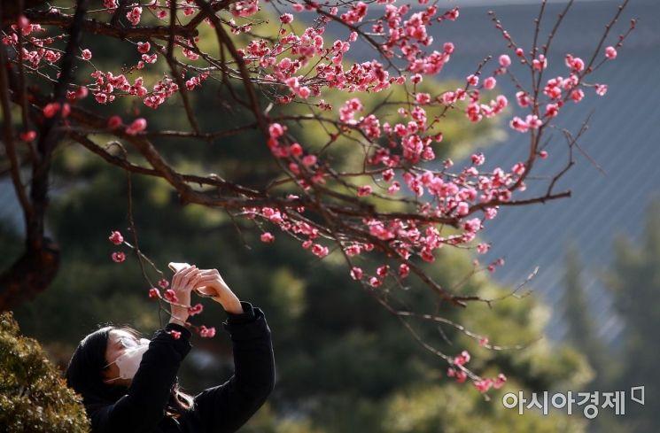 [포토] 오늘 경칩, 봄 기운 가득한 봉은사