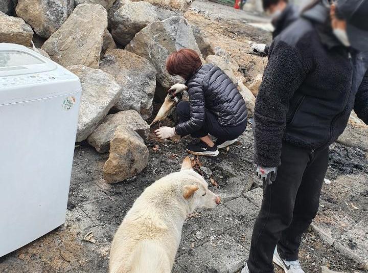 한정애 환경부 장관(왼쪽)이 배우 이용녀씨의 유기동물보호소를 찾아 화재 복구를 돕고 있다. [사진=팅커벨프로젝트 제공] [이미지출처=연합뉴스]