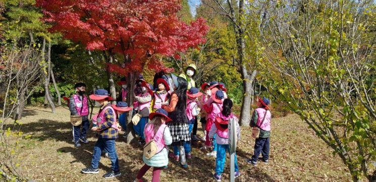편백 유아숲체험원에서 아이들이 숲 체험을 하고 있다.
