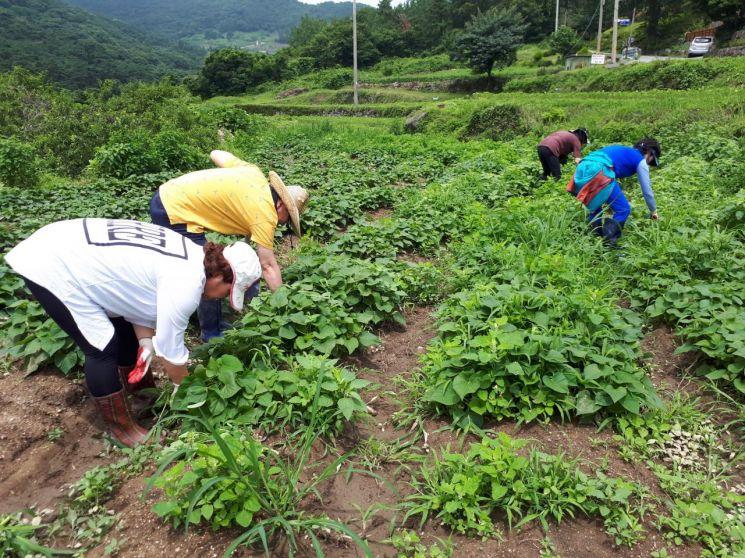 '1개소당 1500만원' 농업 외국인근로자 주거지원사업 접수