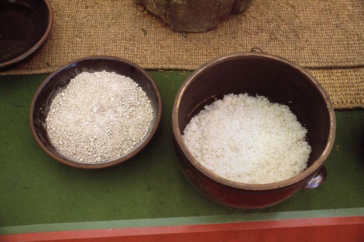 지에밥과 누룩
