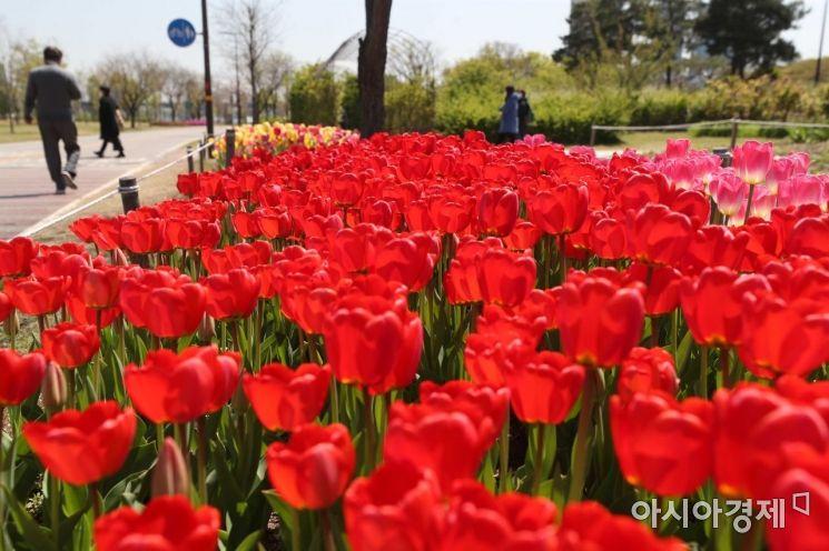 [포토]빨간 봄