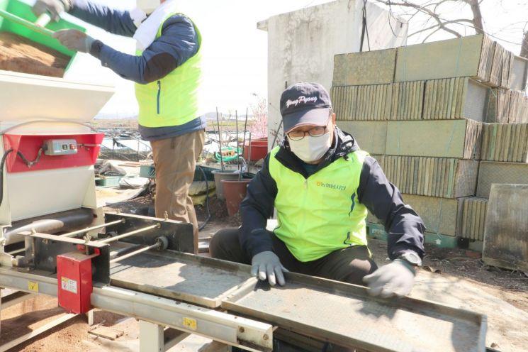 임동순 농협은행 부행장이 4일 농번기를 맞아 인천 강화지역에서 일손돕기를 실시하고 있다.
