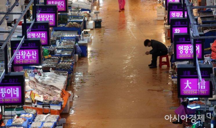 일본 정부가 후쿠시마(福島) 제1원전사고로 발생한 다량의 방사성 물질 오염수를 바다에 배출하기로 결정하면서 우리 국민들의 불안과 걱정이 이어진 가운데 14일 서울 노량진 수산시장이 한산한 모습을 보이고 있다./김현민 기자 kimhyun81@