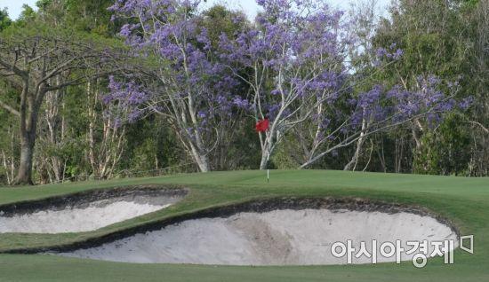 최근 골프장은 그린의 난이도를 높이기 위해 미묘한 언듈레이션을 만든다.